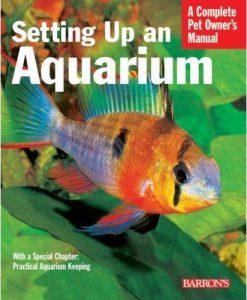 A Complete Pet Owner's Manual - Setting Up an Aquarium
