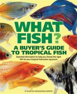 What Fish - A Buyer's Guide to Tropical Fish