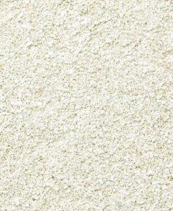AV Aragonite Sand