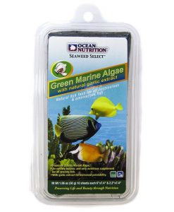 Green Marine Algae